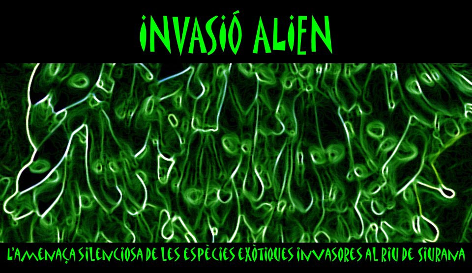 invasió alien v2post